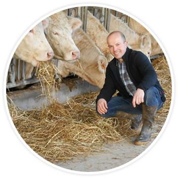 Vente directe de viande dans le Finistère
